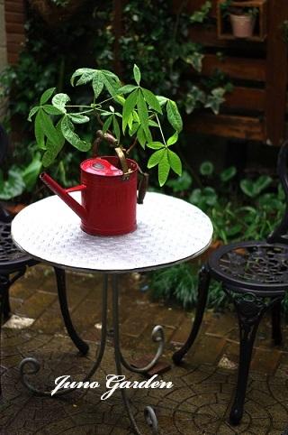 雨の日210124