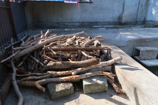 宇都宮動物園 アメリカビーバー