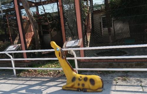宇都宮動物園 キリンさん