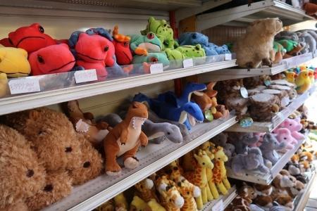 動物園売店