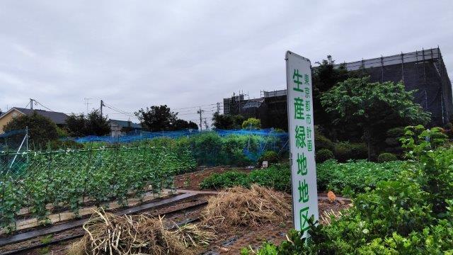 生産緑地2 (3)