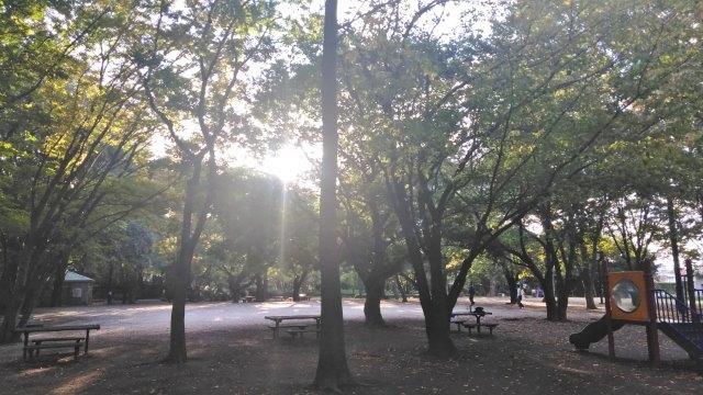 久々井草の森 (2)