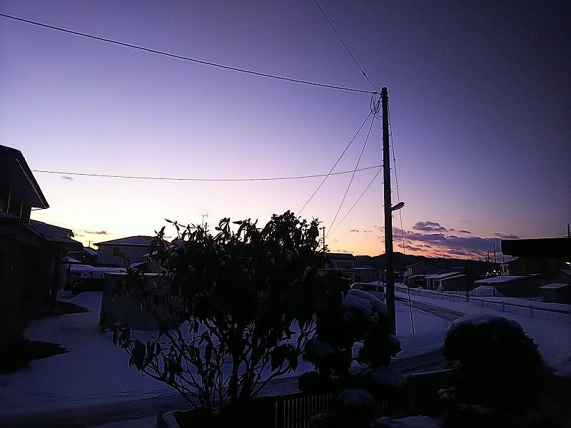 DSC_3334-s.jpg