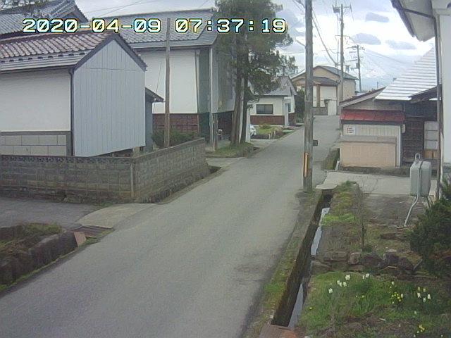 Snapshot_2020_4_9_7_37_19.jpg