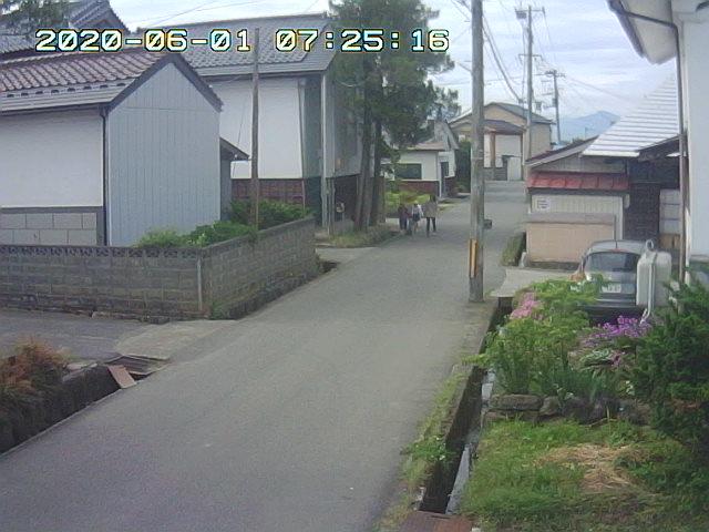 Snapshot_2020_6_1_7_25_12.jpg