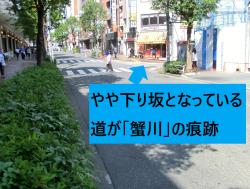 やや下り坂になっている道が蟹川の痕跡 新宿駅東口記事2
