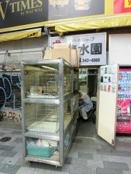 ペットショップ 新宿駅西口記事