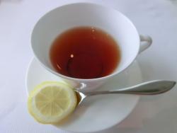 紅茶 東工大精養軒