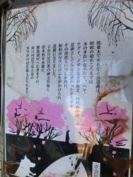 きれいな川 西小山→荏原町散策1