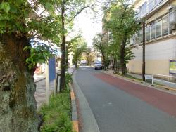 立会道路 西小山→荏原町散策1