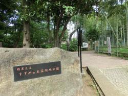 すずめのお宿緑地公園1 碑文谷・柿の木坂散策1