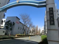 星薬科大学入り口 武蔵小山散策4