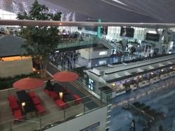ターミナル風景 羽田空港アカシア