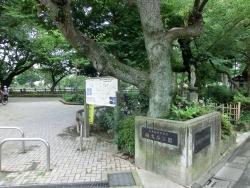 碑文谷公園1 碑文谷・柿の木坂散策4