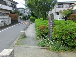 呑川柿の木坂支流緑道 碑文谷・柿の木坂散策4