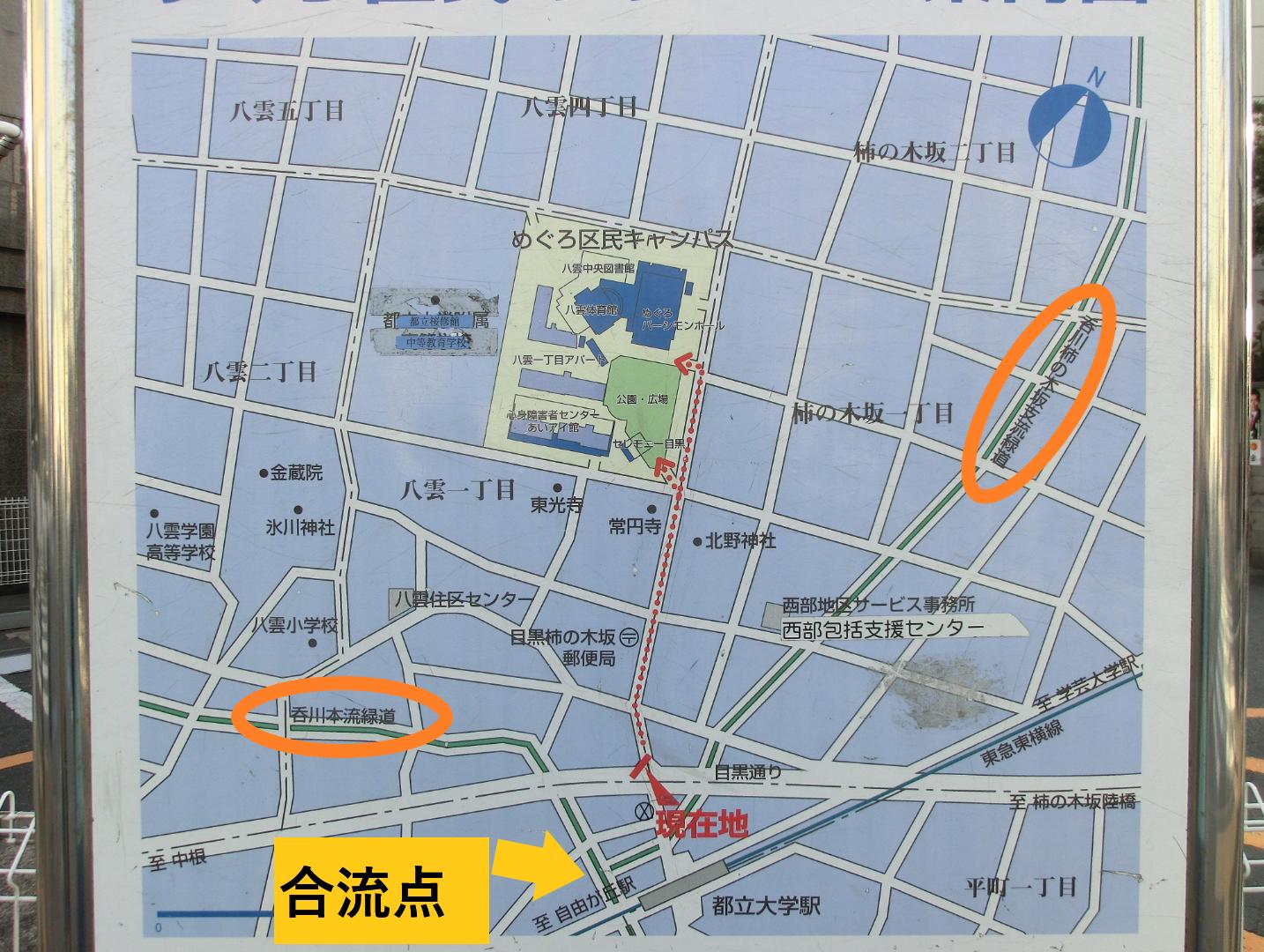 呑川本流と合流 碑文谷・柿の木坂散策4