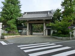 龍雲寺1 碑文谷・柿の木坂・野沢散策5