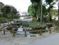 野沢 鶴ヶ久保公園 池 碑文谷・柿の木坂・野沢散策5