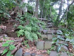 大日如来尊 急峻な坂道 尾山台・等々力散策2