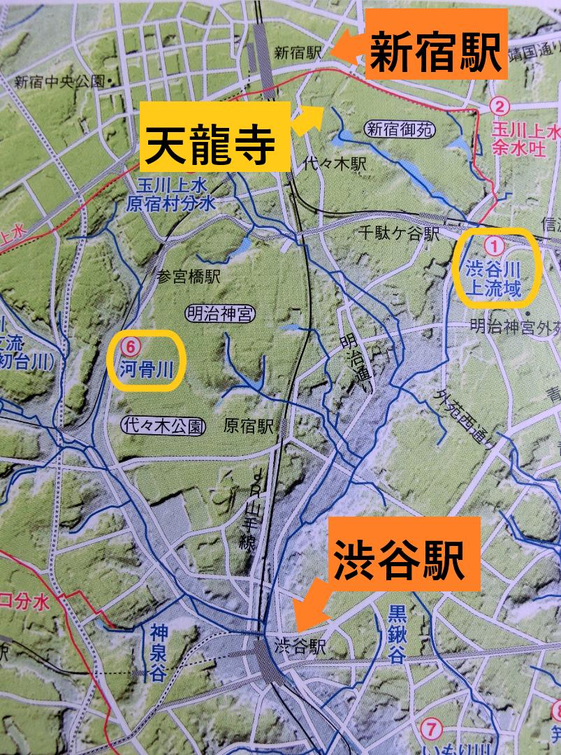 渋谷川2つの支流 新宿の渋谷川上流記事1