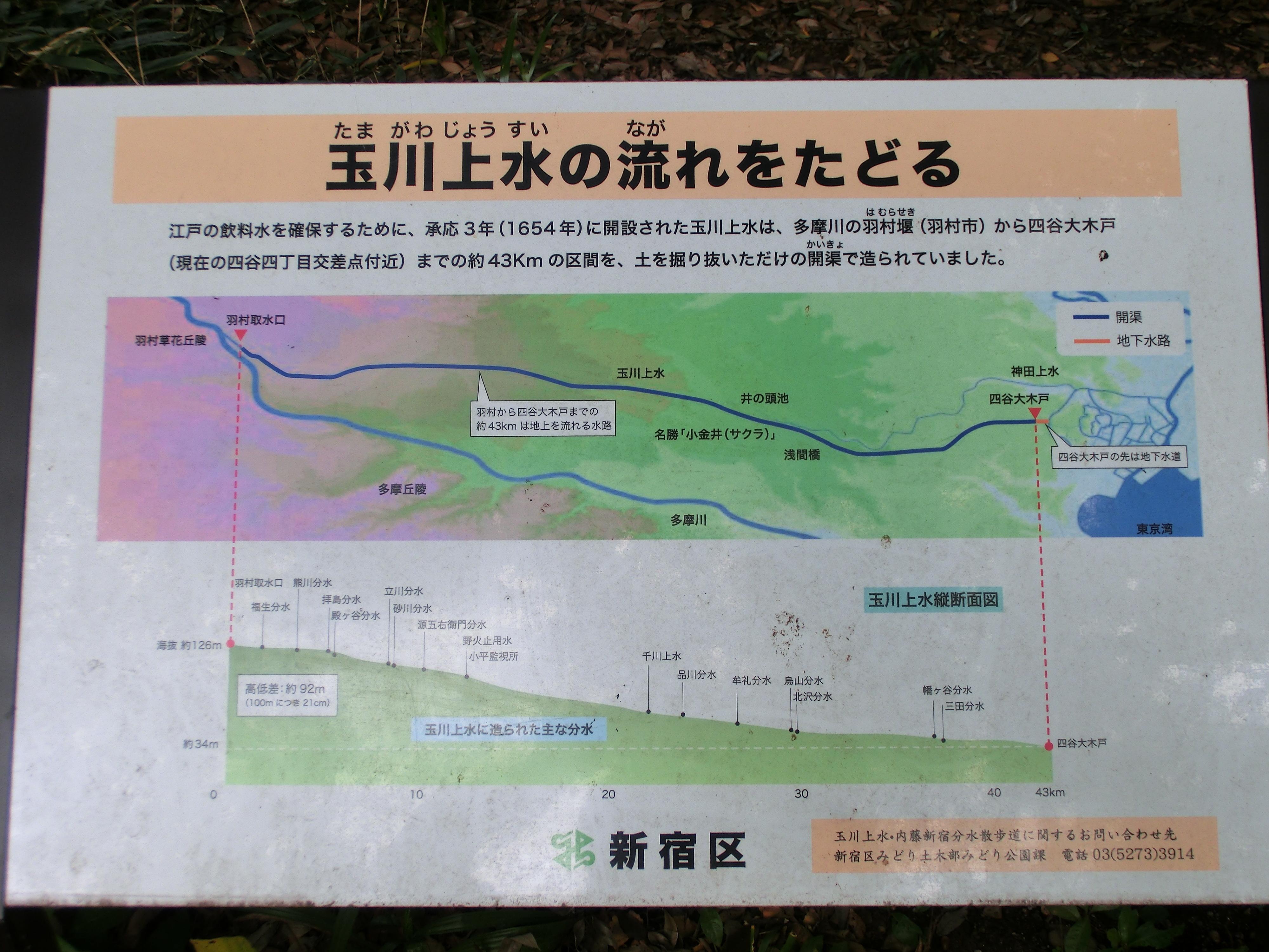 玉川上水の流れをたどる 渋谷川上流散策2