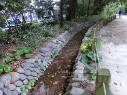玉川上水を復元した水路 渋谷川上流散策2