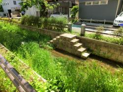 呑川緑道 桜新町・深沢散策2