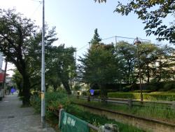 日本体育大学の裏 桜新町・深沢散策2