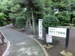 深沢二丁目緑地 桜新町・深沢散策3