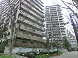 深沢ハウス2 桜新町・深沢散策4