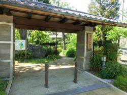 深沢の杜緑地 桜新町・深沢散策4