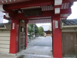 真福寺 桜新町・深沢散策5