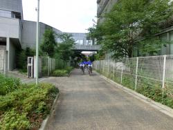 立正大学付属中学・高校脇の内川跡 臼田坂散策2