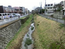 開渠 三田用水跡散策1