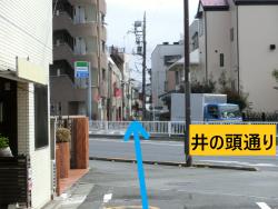 井の頭通りにぶつかる 三田用水跡散策1
