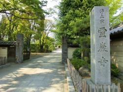 霊巌寺 新川散策1