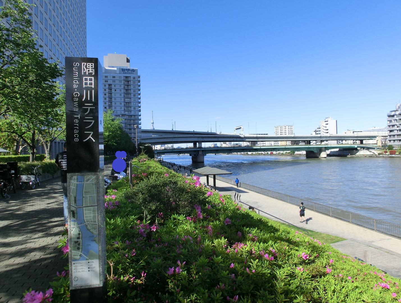 隅田川テラス 新川散策記事2