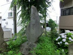磨墨塚2 臼田坂散策4