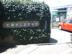 大森テニスクラブ1 臼田坂散策4