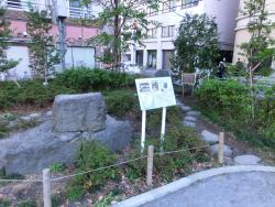 越前堀公園の石垣1 新川散策4