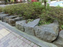 越前堀公園の石垣2 新川散策4