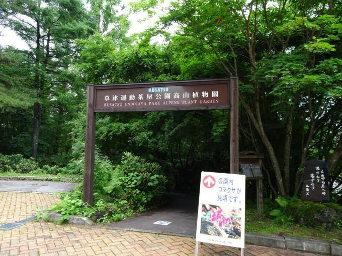 草津運動茶屋高山植物園
