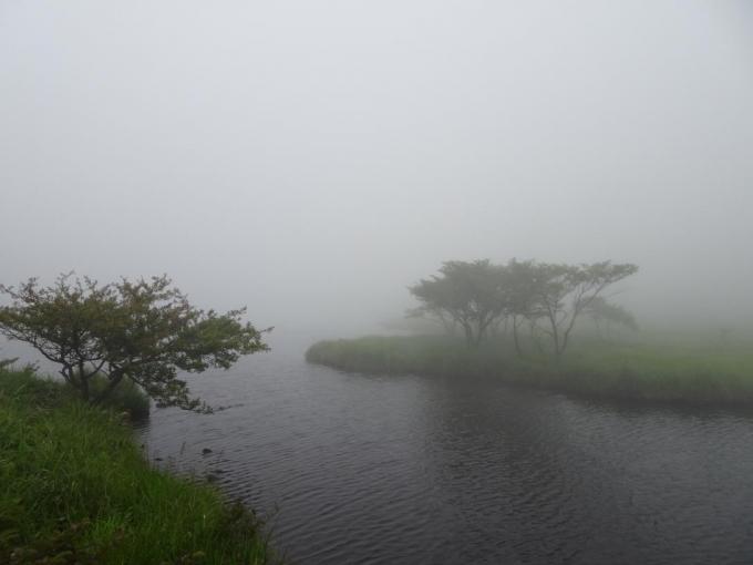 こんな霧の中