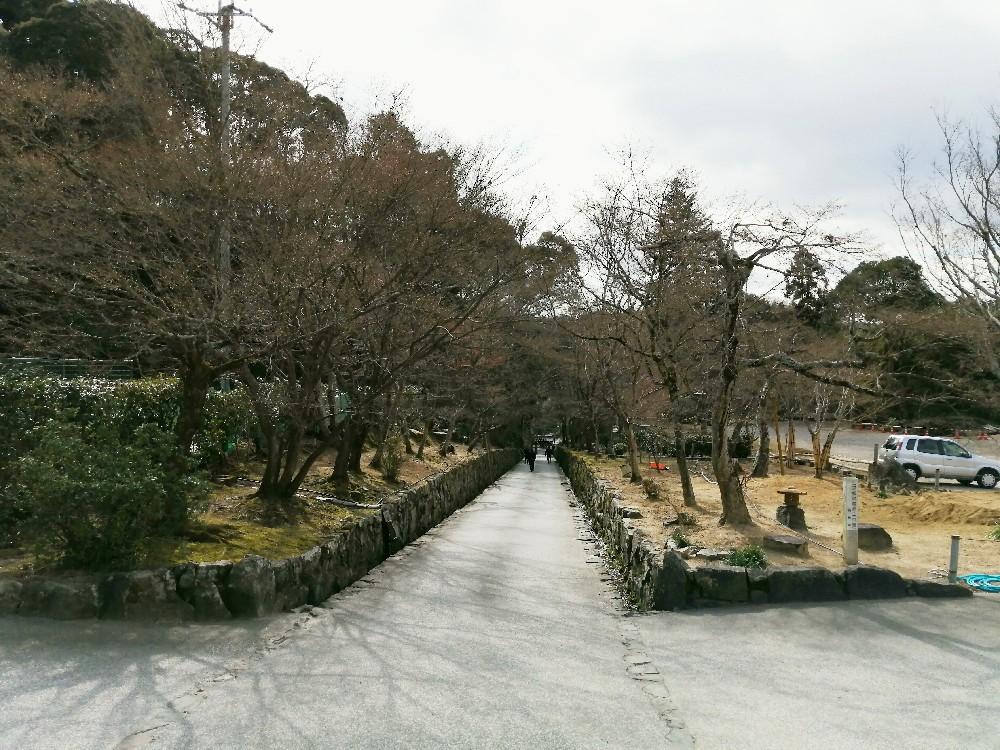 興聖寺の駐車場