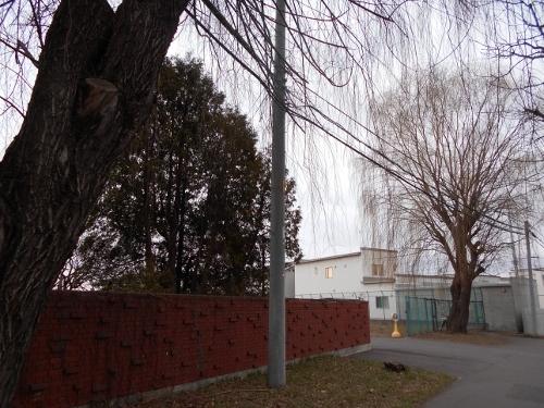 武蔵短大 車両通用口-2