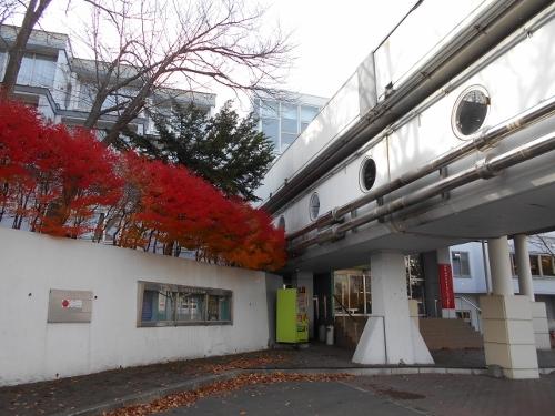 北海道青少年会館-1