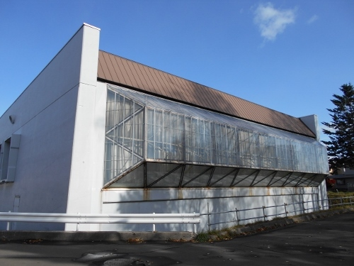 北海道青少年会館-5