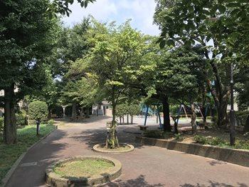 みどりと花清掃6184 (2)