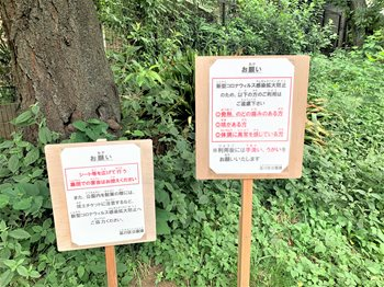 みどりと花9185 (2)