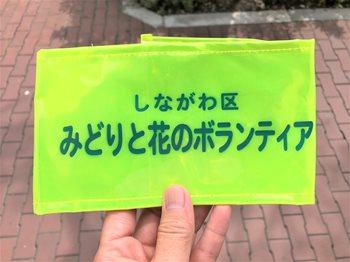 みどりと花9183 (2)